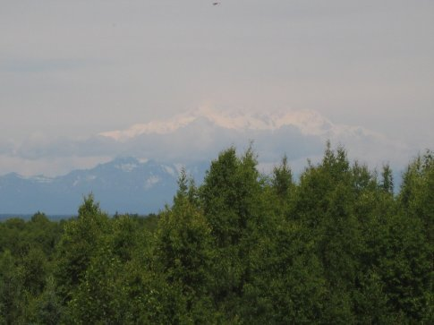 First glimpse of Mt. McKinley aka Denali. It was a fairly clear day so only the top was shrouded in clouds.
