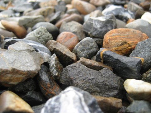 Interesting pebbles. Look at the striped one.
