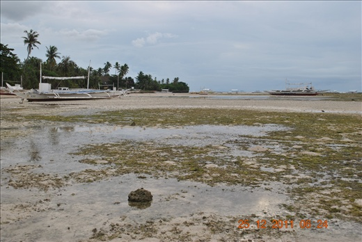 low tide...as we get ready for dolphin-watching and island hopping!