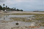 low tide...as we get ready for dolphin-watching and island hopping!: by mlroa1015, Views[354]