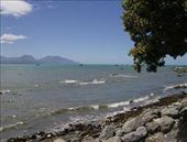 Kaikoura was beautiful. I am still amazed by the colors of the water here!: by monica_gill, Views[231]