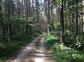 In Bavaria: by mrandrew, Views[420]