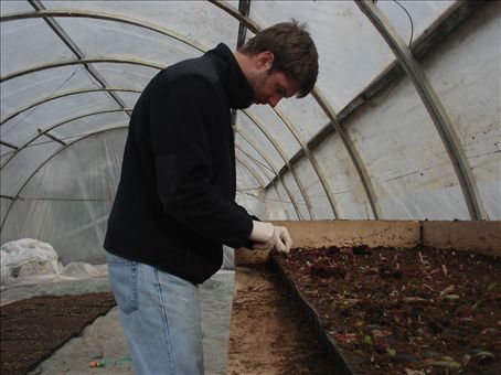 Me transplating beet roots and slowly filling the greenhouse.