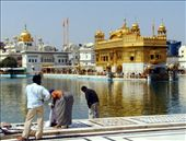Amritsar, Golden Temple: by mstep, Views[156]