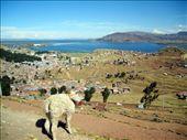 Puno, Lake Titicaca, Peru: by mstep, Views[220]