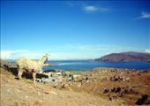 Puno, Lake Titicaca, Peru: by mstep, Views[201]