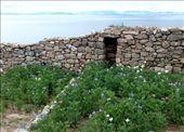 Isla del Sol: by mstep, Views[130]