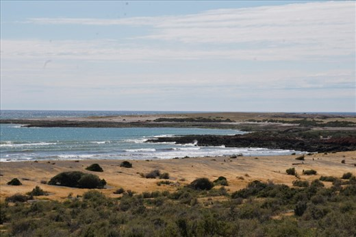 This vast area is home to South America's largest Magellanic penguin colony