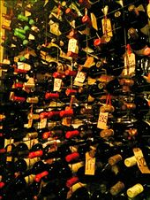 Free wine cellar tour while we waited at Don Julio: by mtmmeyer, Views[24]