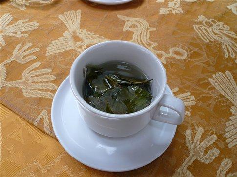 I like my Coca Tea!