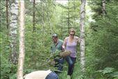 Picking mushrooms: by murrihyk, Views[62]