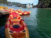Kayaking in Ha Long Bay!: by mwollak, Views[60]