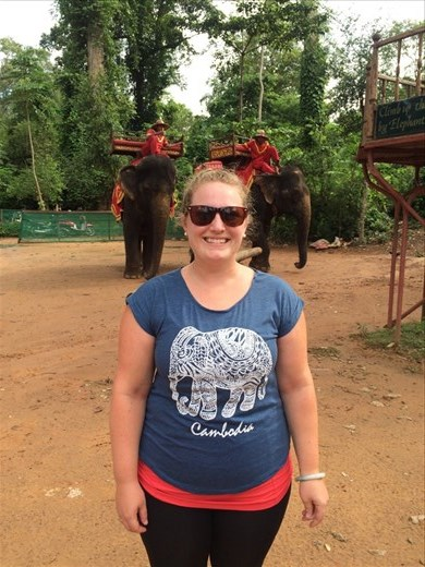 Elephants in the temples!
