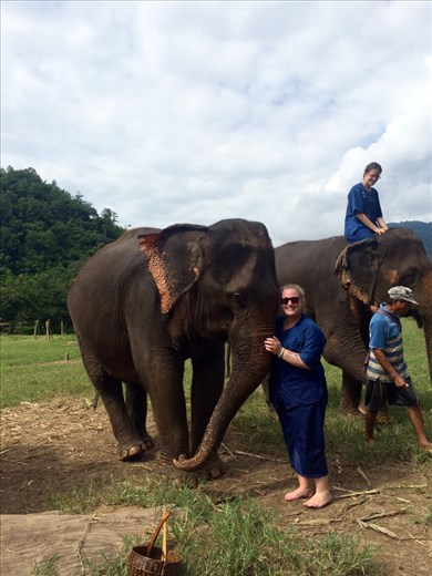 Riding and playing with the elephants.