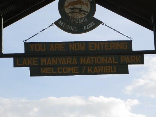 Day 1 Safari - Lake Manyara National Park