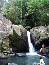 El Yunque Rainforest: by mykelpr82, Views[97]