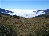 Over the Andes and into the cloud forest: by nat_and_chris, Views[172]