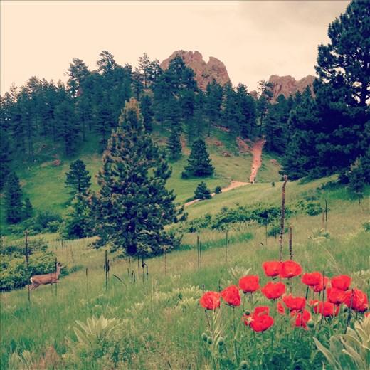 Red Rocks Trail, Boulder, CO