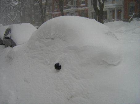 Where is my car?