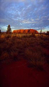 ULURU Red sand, gold rock, blue sky: by nathc89, Views[312]