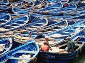 Fishermen discuss their catch in a mash of royal blue fishing boats.: by newlo, Views[152]