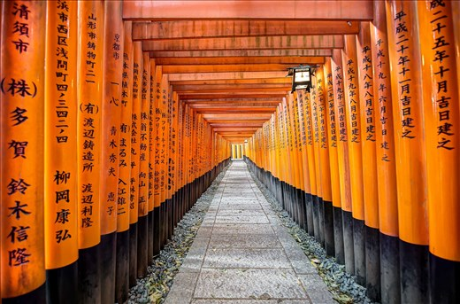 Thousands of orange torii gates line the trail up the hillside to the shrine