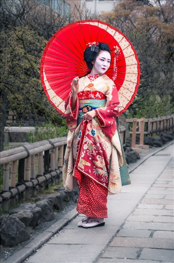 A geisha with the usual white make-up, elaborate kimono and perfect hair