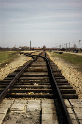 This pictures was taken in Auschwitz-Birkenau. This place was so incredibly vast, that you got a bit dizzy to think that so many people were murdered on the grounds. The tracks are so incredibly symbolic. The tracks gave the Nazi's access to murder so many innocent people. It led them to a road to nowhere.  Photography-wise, I like this photo because o fthe depth of field. The focus is mostly on the tracks and you don't really know where thew tracks go. The shadows in the tracks are dark which represents the unknown. I love that the sky is gray for it really sets the mood for the photo and makes it very grim.