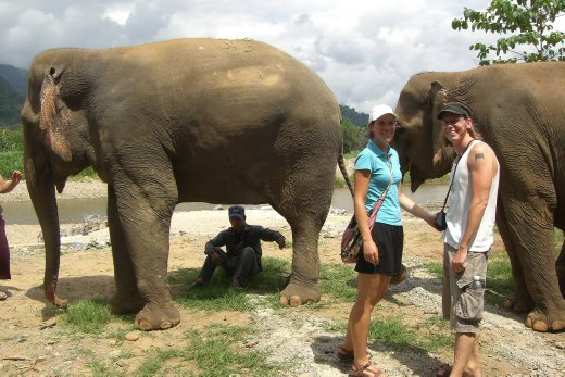 Just hanging out with the elephants, do we look nervous?