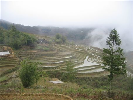 More Sapa in the mist