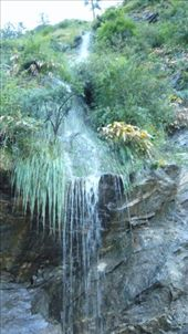 Forest Waterfall: by nimai_pandit, Views[96]
