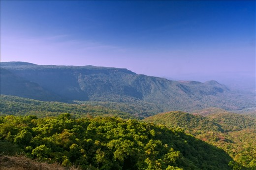 Historically the Western Ghats were well-covered in dense forests that provided wild foods and natural habitats for native tribal people. Its inaccessibility made it difficult for people from the plains to cultivate the land and build settlements. The area is ecologically sensitive to development and was declared an ecological hotspot in 1988 through the efforts of ecologist Norman Myers. Its a world heritage site. The range is home to at least 84 amphibian species, 16 bird species, seven mammals, and 1,600 flowering plants which are not found elsewhere in the world.