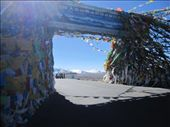 Lhasa to Nepal border: on the road, prayer flags on top of every pass (here we are over 5000 m): by niviosabine, Views[952]