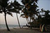 India, Alappuzha: beachlife: by niviosabine, Views[114]