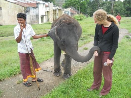 emma hearts elephants