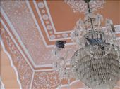 Pigeon chandelier at the palace: by noflyzone, Views[148]
