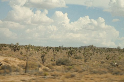 View from the bus on the way to Las Vegas. Just the scenery you would expect we guess, being a desert.