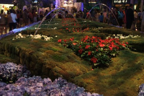 Magical water garden display in the middle of a hotel.