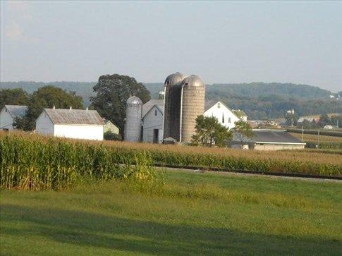 silos to store grain