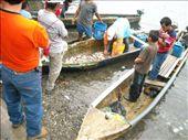 fish market: by nomad_kiwis, Views[334]