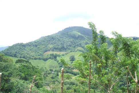 Colombia is beautiful and green