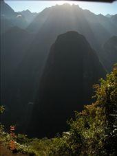 by nomad_kiwis, Views[229]