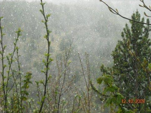 full on snowing!
