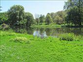 St James Park: by nomad_kiwis, Views[314]