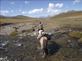 A horseback river crossing near Khovsgul Lake. I took this photo in the saddle, thus its off center. : by nomadicnorris, Views[235]