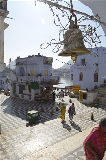Inspite of the prickly Iron thorns -the bell chimes sweetly.Welcome to Pushkar.