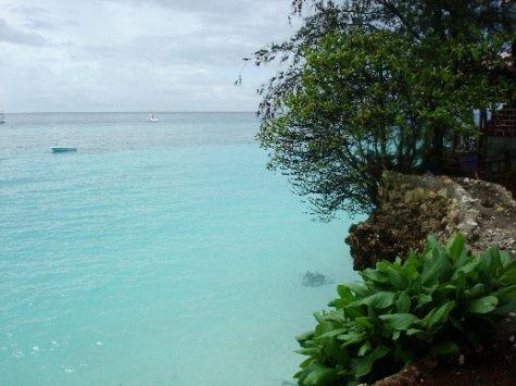 view from the beach in Zanzibar