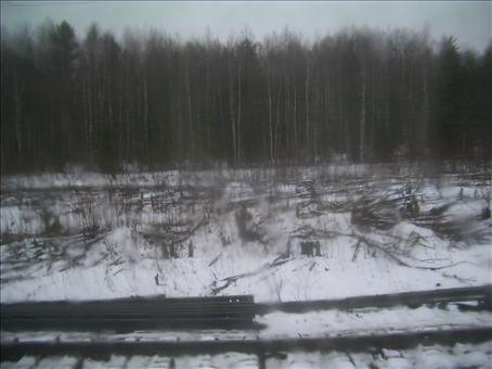 Snow on the siberian plateau
