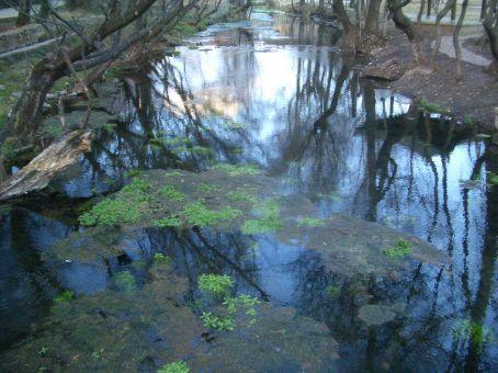A pond in Shuhe