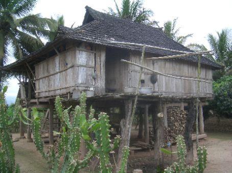 Dai minority style house